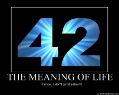 Meaning of Life - 42